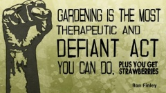 Ron Finley - guerilla gardener