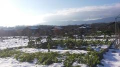Et c'est l'hiver!